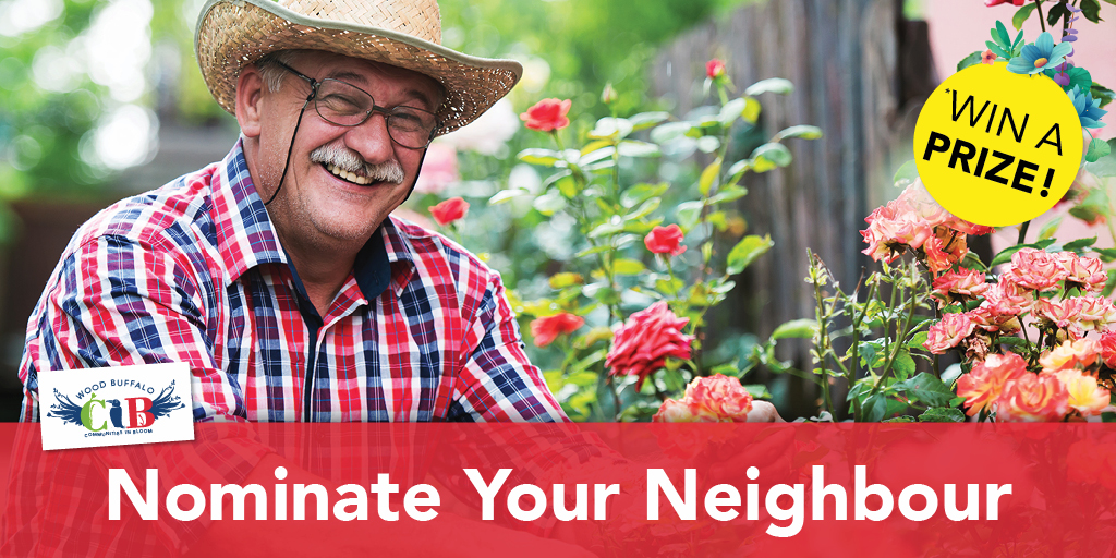 Nominate Your Neighbour